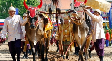 Royal Ploughing Day in Cambodia