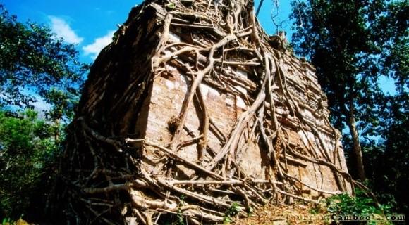 Sambor Prei Kuk Temple in Kampong Thom
