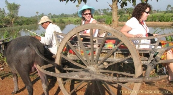 Ox Cart in Kampong Thom