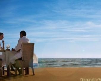 South Beach Honeymoon